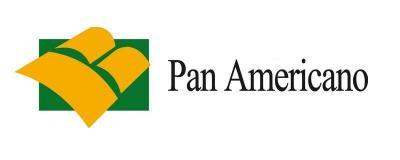 Panamericano